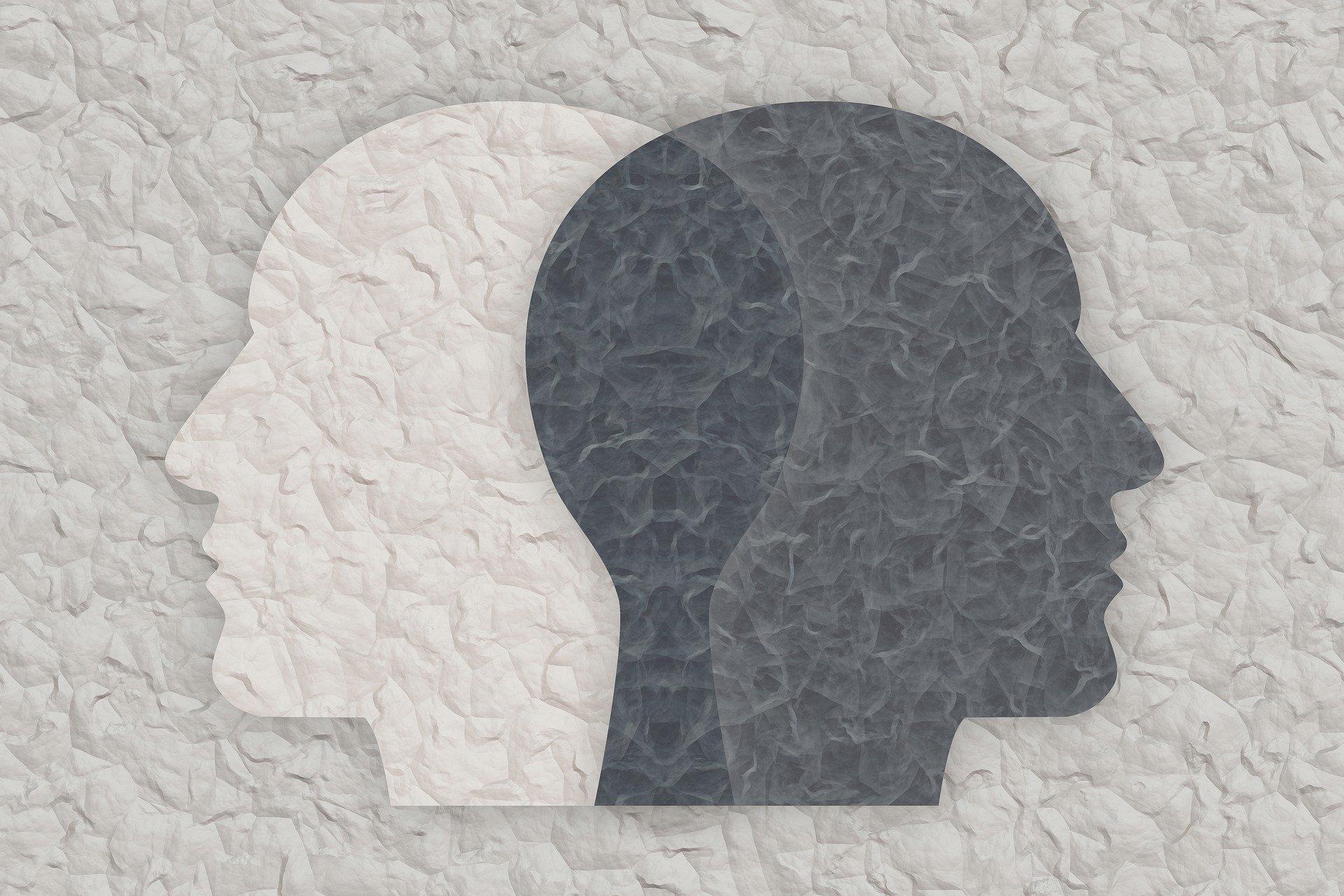 osnove razumevanja bipolarnog poremecaja